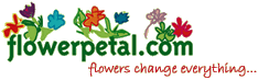 Flowerpetal.com Logo with the tagline Flowers Change Everything